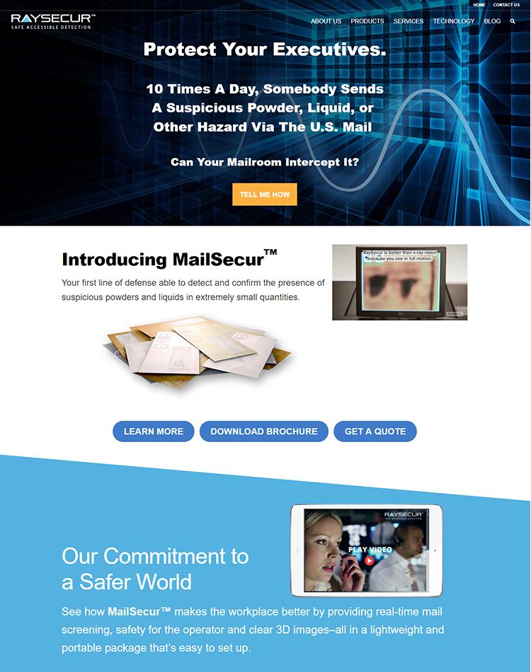 RaySecur homepage